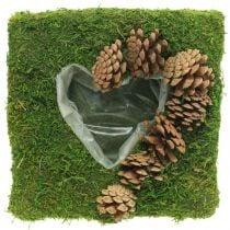 Plantepude hjertemos og kegler firkantet 25 × 25cm
