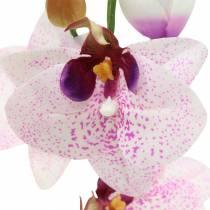 Kunstig orkidé phaleanopsis hvid, lilla 43 cm