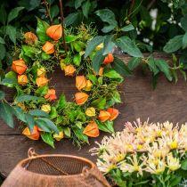 Physalis krans kunstig orange, grøn Ø28cm efterårsdekoration