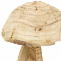 Svamp Paulownia træ Ø16cm H18cm
