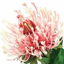 Protea Kunstig lyserød 73 cm