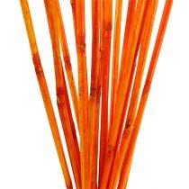 Rattan stængler orange 100 cm 20stk.
