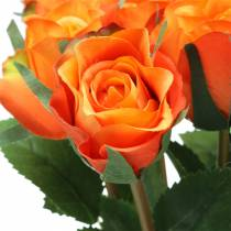Rose Orange 42cm 12stk