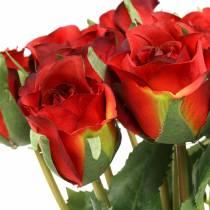 Roserød 42 cm 12stk