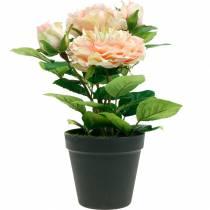 Dekorativ rose i en gryde, romantiske silkeblomster, lyserød pæon