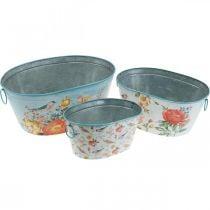 Planteskåle, forår, planter / fugle, metalbeholder ovalt L39 / 31 / 24,5 cm sæt med 3