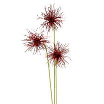 Silke blomster Xanthium Bordeaux 64cm 4stk