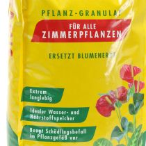 Seramis® plantegranulat til indendørs planter (7,5 ltr.)