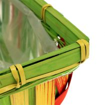Chip kurv sæt vinklet flerfarvet 12stk 20cm x 11cm