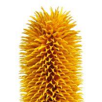 Spids kort gul 1 kg