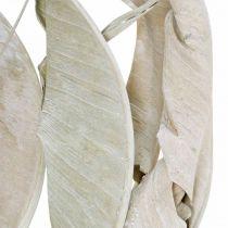 Strelitzia blade vaskes hvide, tørrede 45-80cm 10stk