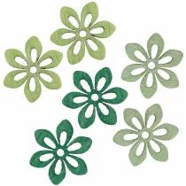 Drys dekoration blomst grøn, lysegrøn, mynte træ blomster til at drysse 144p