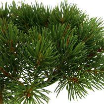 Gran kransegrøn Ø22cm