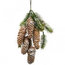 Firgrøn med kogler, vinterdekoration, fyrretræsgren til at hænge, keglepynt, snedækket L33cm