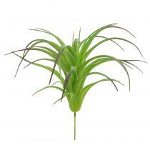 Deco tillandsie grøn 16 cm 4stk