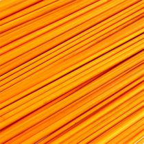Tonkin gylden gul 70 cm - 80 cm 150 stk.