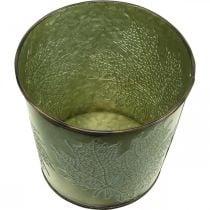 Plante til efterår, planter med bladindretning, metalspand grøn Ø14cm H12,5cm