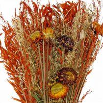Tørrede blomster buket orange blanding 42cm