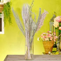 Tørrede blomster eksotisk hvid-natur blanding, tør flora blanding