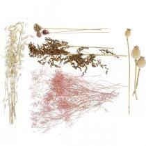 Tørrede blomsteræske Hvid-lyserød blanding Tørrede blomster sæt