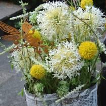 Trommestik Craspedia Gul Kunstig Have Blomst Silkeblomster 15stk