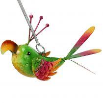 Fugl til at hænge grøn, lyserød, orange 18,5 cm