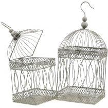 Aviary fugl kvadratgrå 21 / 17cm 2stk