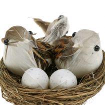 Fugle rede med æg og fugl 6stk