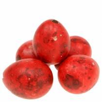 Vagtelæg rødblæst æg 50p