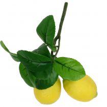 Citron gren med 2 citroner 24cm gul