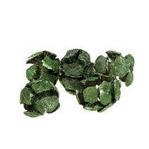 Cypress kegler 3cm grøn 500g