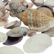 Shell blanding naturlig 400g