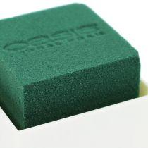 OASIS® Borddesign 6cm Neo & Viva 24st