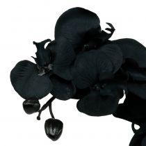Orkidé til dekoration sort 54cm
