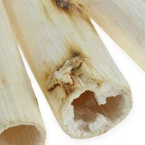 Solsikke stamme 20 cm hvid 12stk