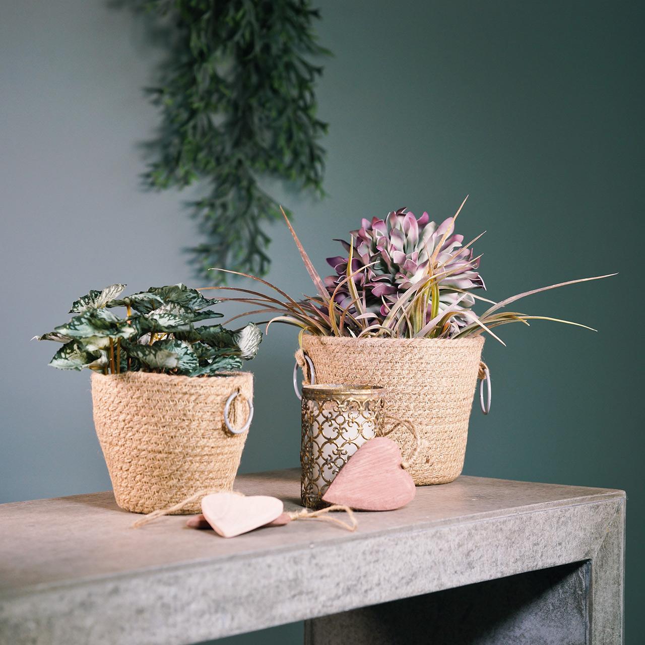 Zinkpotte med jute-planter Ø13cm H12cm