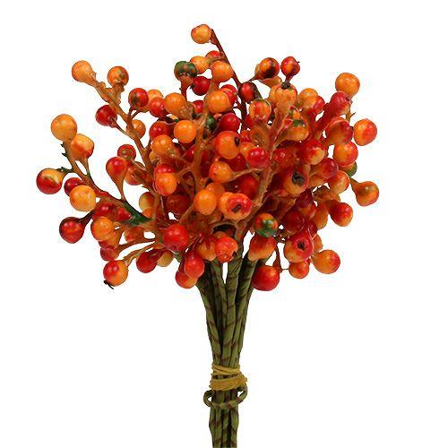 Berry bund orange L20cm