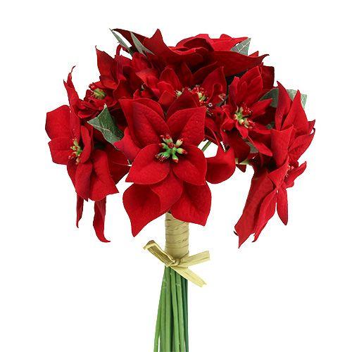 Julestjerne i en flok rød Ø18cm L30cm