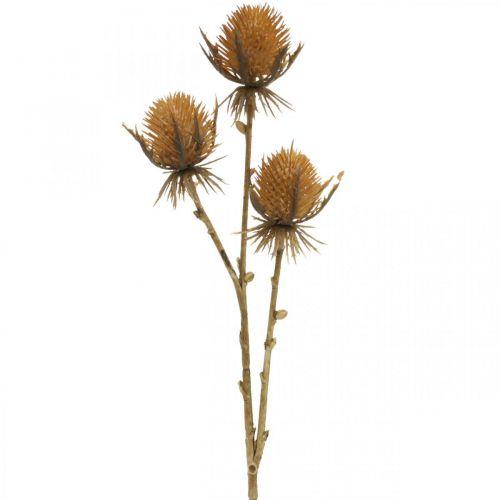 Tidselgren brun kunstig plante efterårsdekoration 38cm