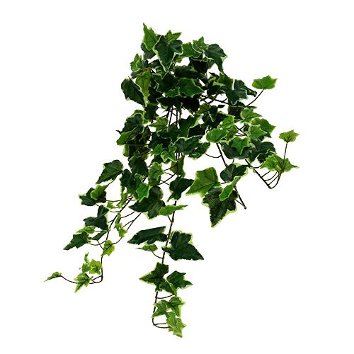 Ivy bøjle hvidgrøn 70 cm