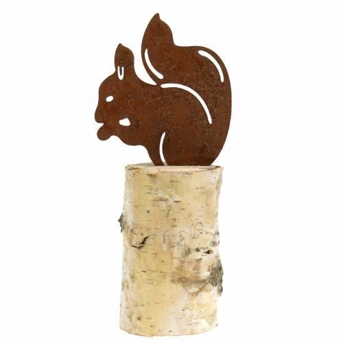 Egern rust på bagagerum H22cm