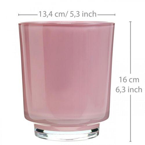 Glasplanter, orkidégryde, dekorativ vase pink H16cm Ø13,4cm