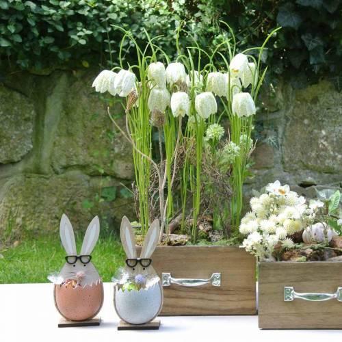 Trækanin i æg, foråret dekoration, kaniner med briller, påskeharen 3stk