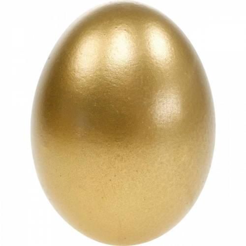 Kyllingæg Blæst æg Påskedekoration Forskellige farver 10stk