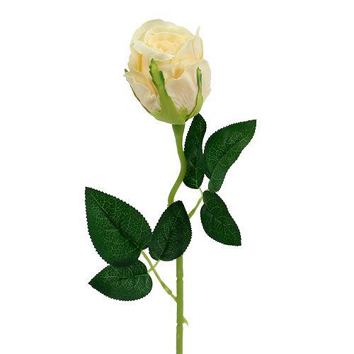 Kunstige blomster rose creme Ø6cm L50cm 6stk