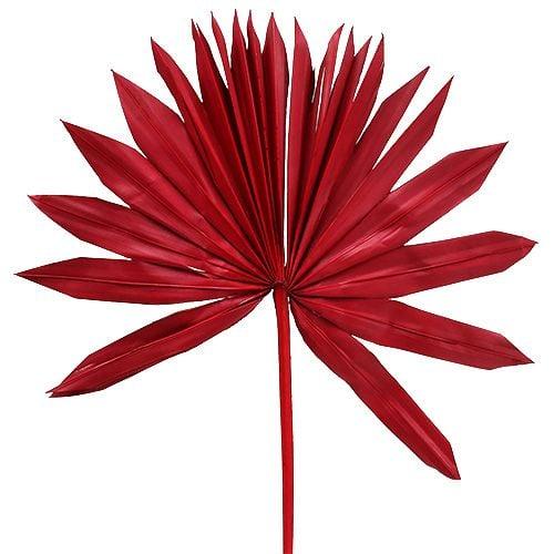 Palmspear Sun Red 30stk