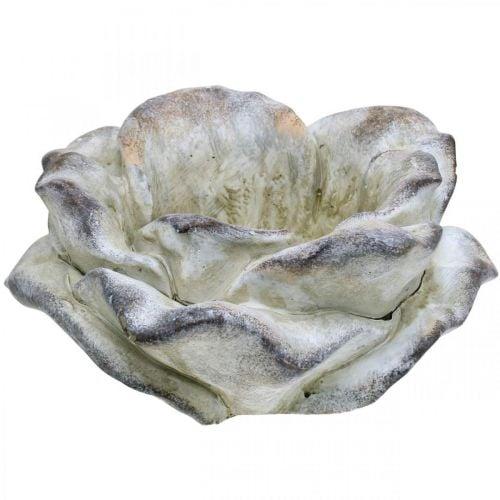 Betonrosen, havedekoration, planterose, begravelsesblomster grå, abrikos, violet Ø12cm L26.5cm H11cm