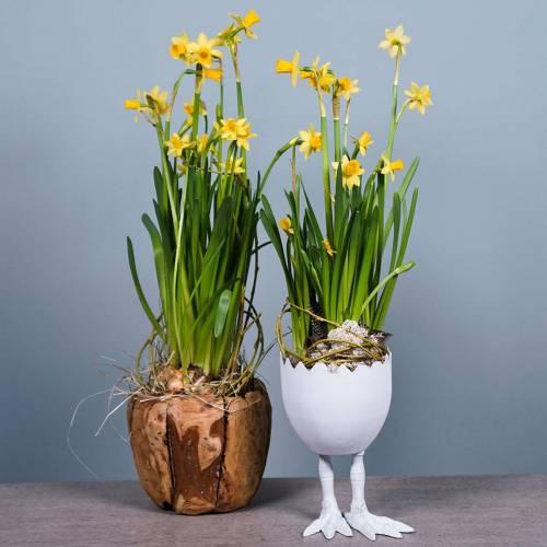 Plante pot æg skal med ben Ø13cm H21cm hvid