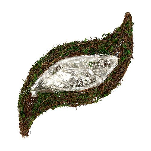 Plant bølge vinstok, mos 45cm x 18cm H7cm