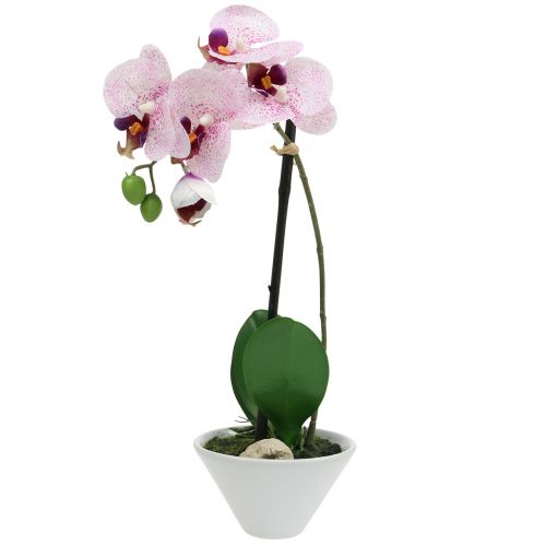 Kunstig phalaenopsis lilla-hvid i skål H38cm